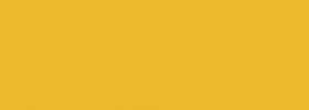 Jet Yellow AMD1040