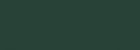 Moss Green AMD 6005